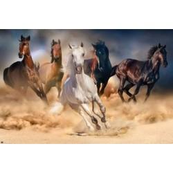 Tablou Horses